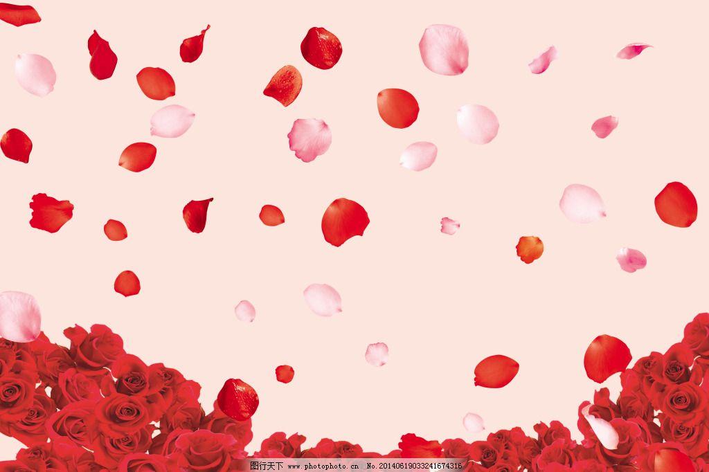 花瓣分层免费下载 psd分层 花瓣模板 花瓣素材 花瓣素材 psd分层 花瓣