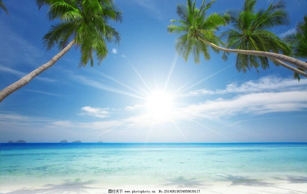 蓝天大海 蓝天 大海 天空 沙滩 海滩 椰树 风景 海景 自然风景 自然