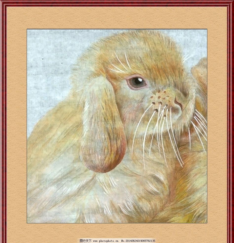 兔子白描工笔画分享展示