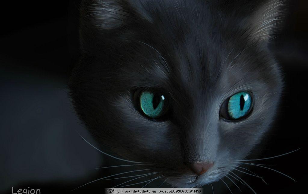 黑猫 手绘 猫 猫科 画 猫科动物 其他 动漫动画 设计 72dpi jpg