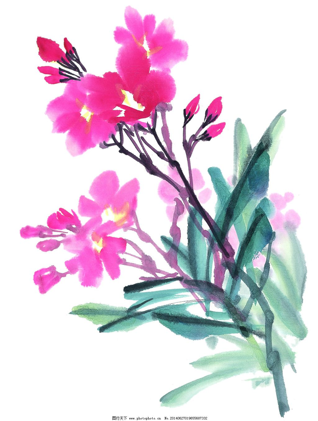 水墨花卉 水墨花卉免费下载 高清 国画 绘画 鲜花 艺术 源文件