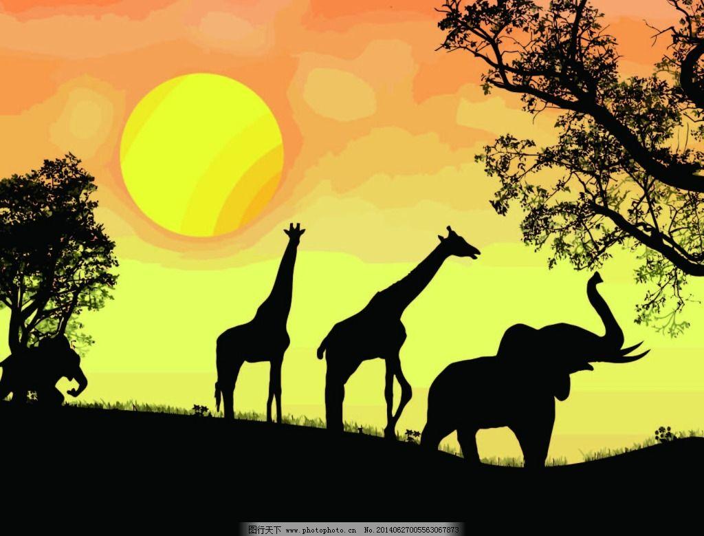 夕阳下的动物