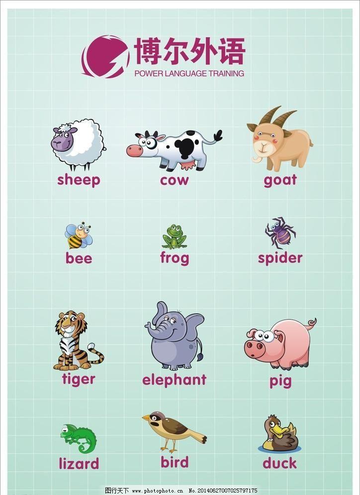 英语培训动物 单词