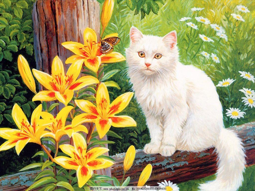 油画猫免费下载 动物 兰花