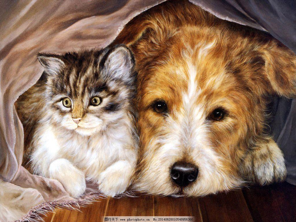油画猫狗免费下载 动物 狗 猫 油画 油画 猫 狗 动物 装饰素材