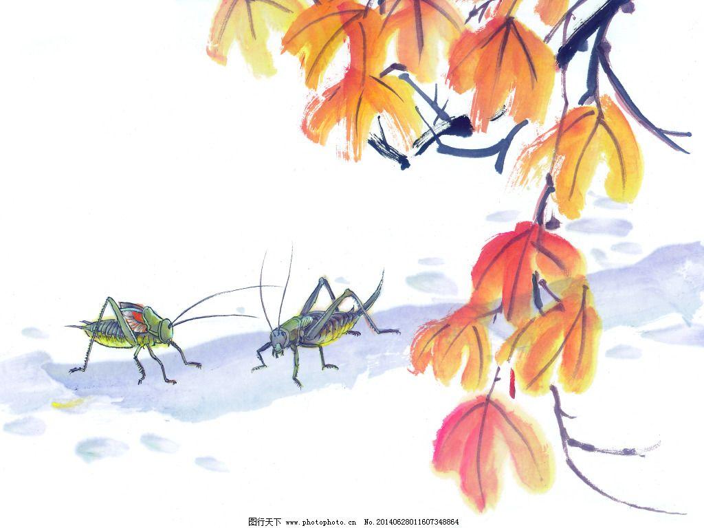 蚂蚱免费下载 白描 工笔画 美术 泼墨 写意 中国画 装饰画 工笔画