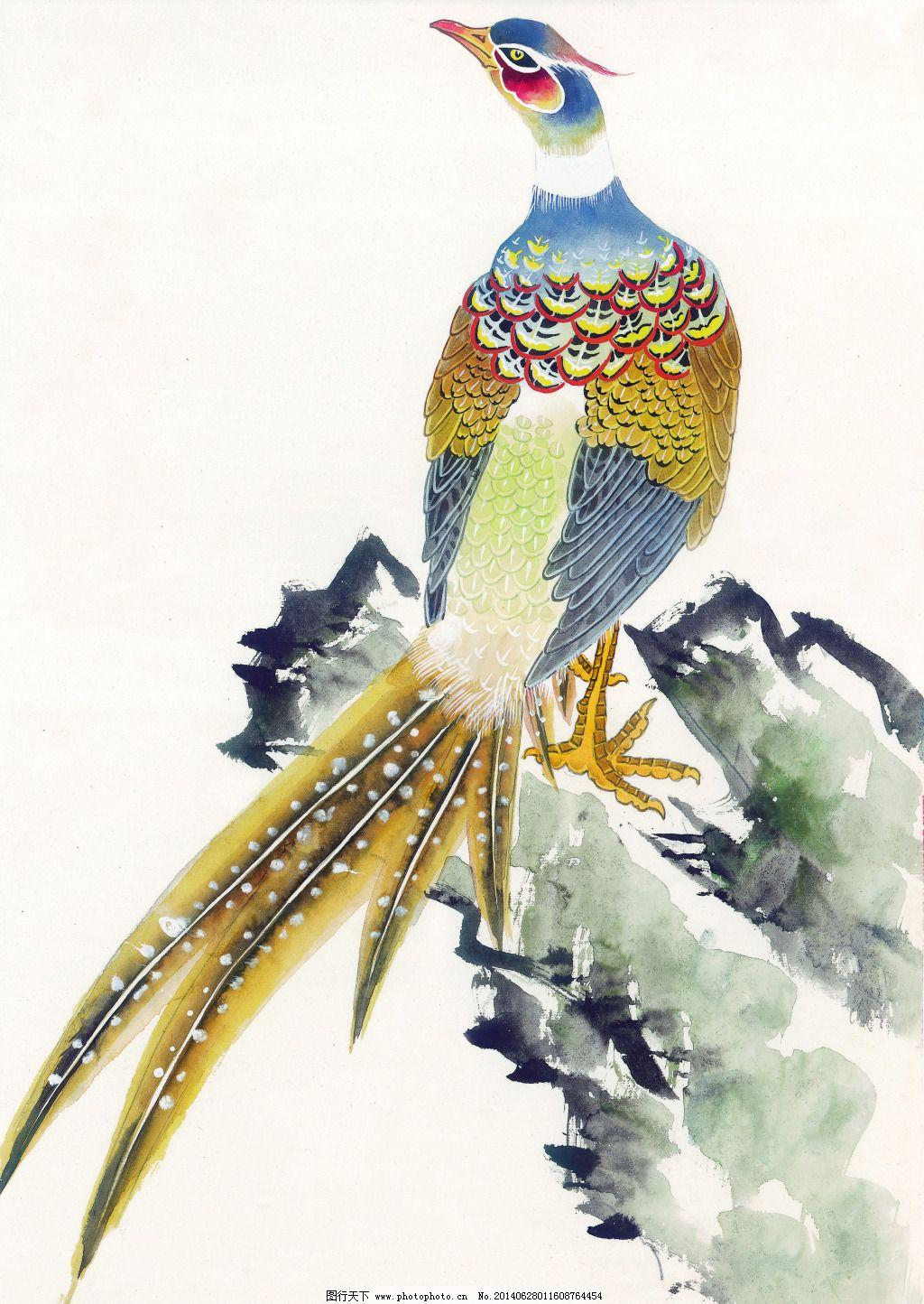 绘画 孔雀 美术 泼墨 人物 水墨 文化艺术 花鸟 孔雀 花鸟艺术 工笔画