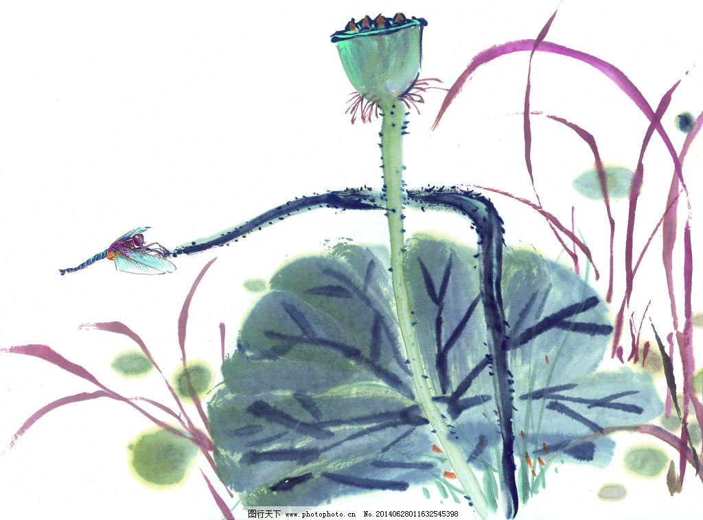 荷叶免费下载 白描 工笔画 绘画 美术 泼墨 文化艺术 写意 中国画