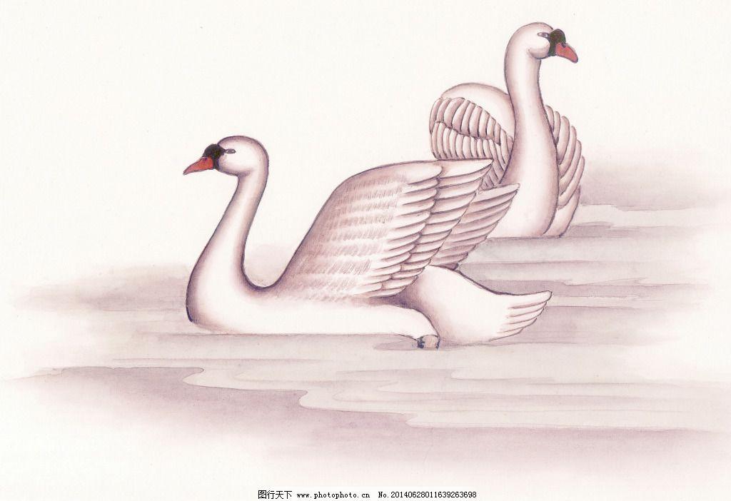 绘画 美术 泼墨 人物 水墨 天鹅 文化艺术 写意 天鹅 花鸟艺术 工笔画