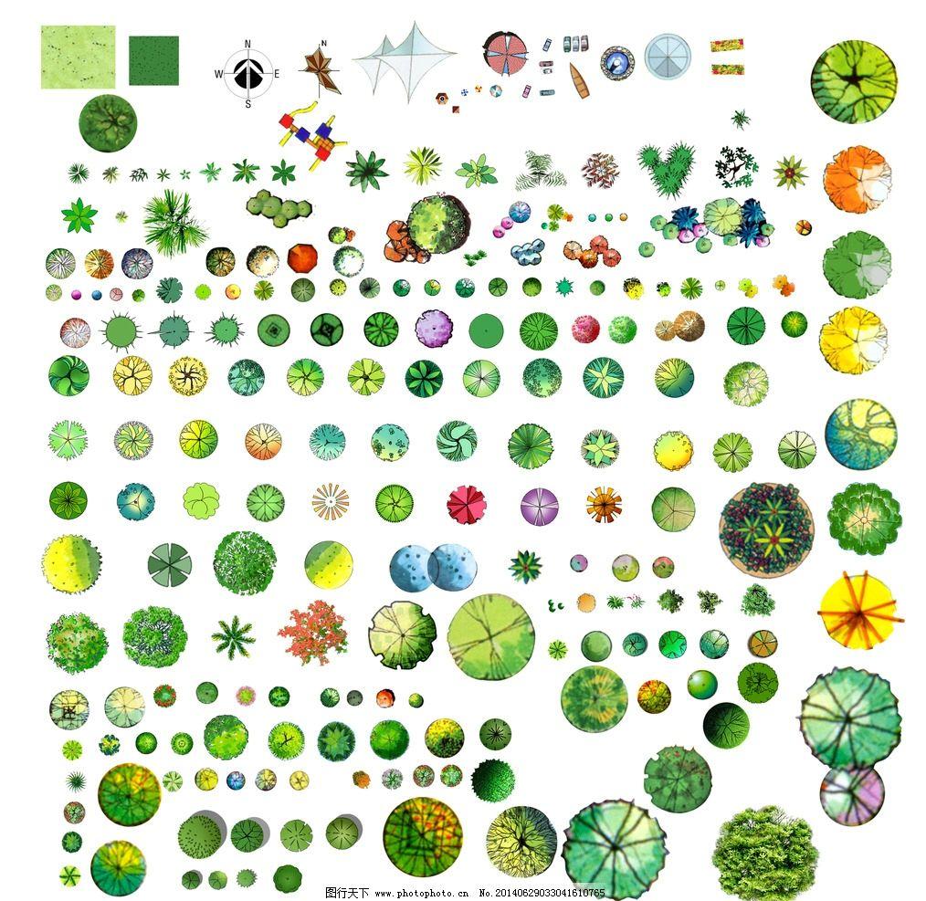 景观设计植物平面图ps图片