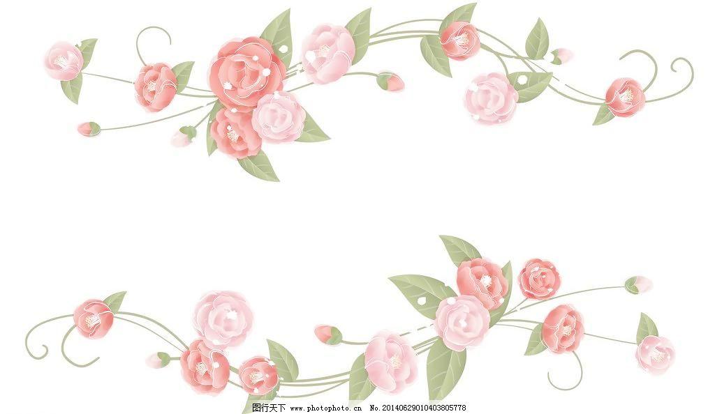 花草 花纹 花纹背景 精美花纹 玫瑰 玫瑰 玫瑰花 手绘玫瑰 玫瑰花藤