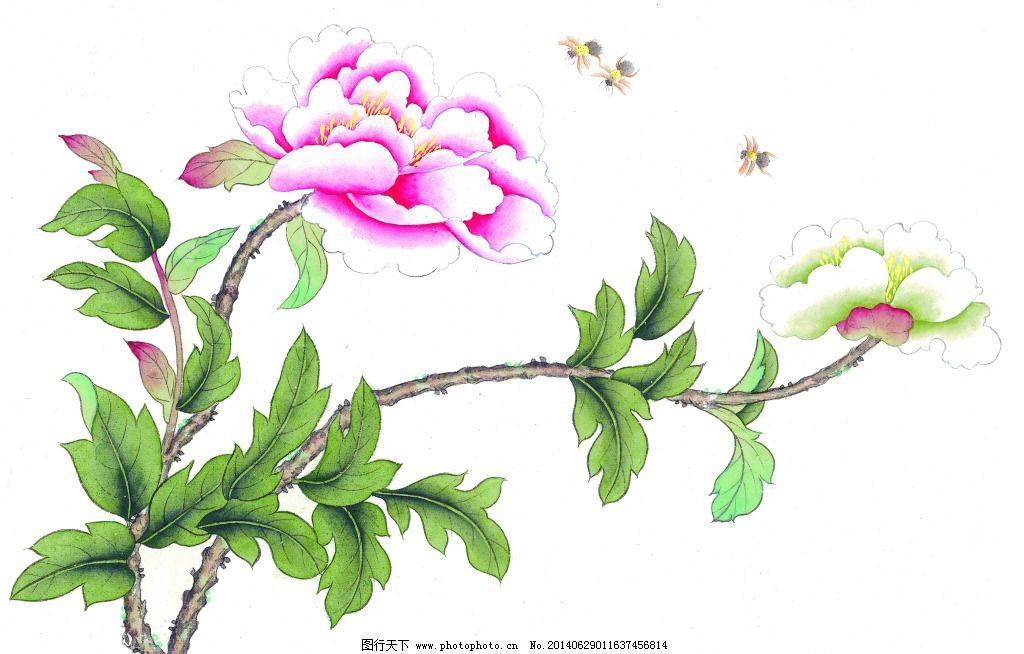 牡丹蜜蜂免费下载 白描 工笔 国画 花鸟 绘画 蜜蜂 牡丹 泼墨 水墨