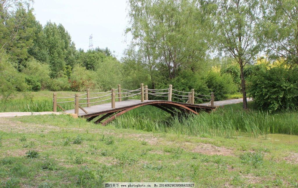 田园木桥 田园风光 夏季景色 养眼图片 鸟岛木桥 园林建筑 建筑园林