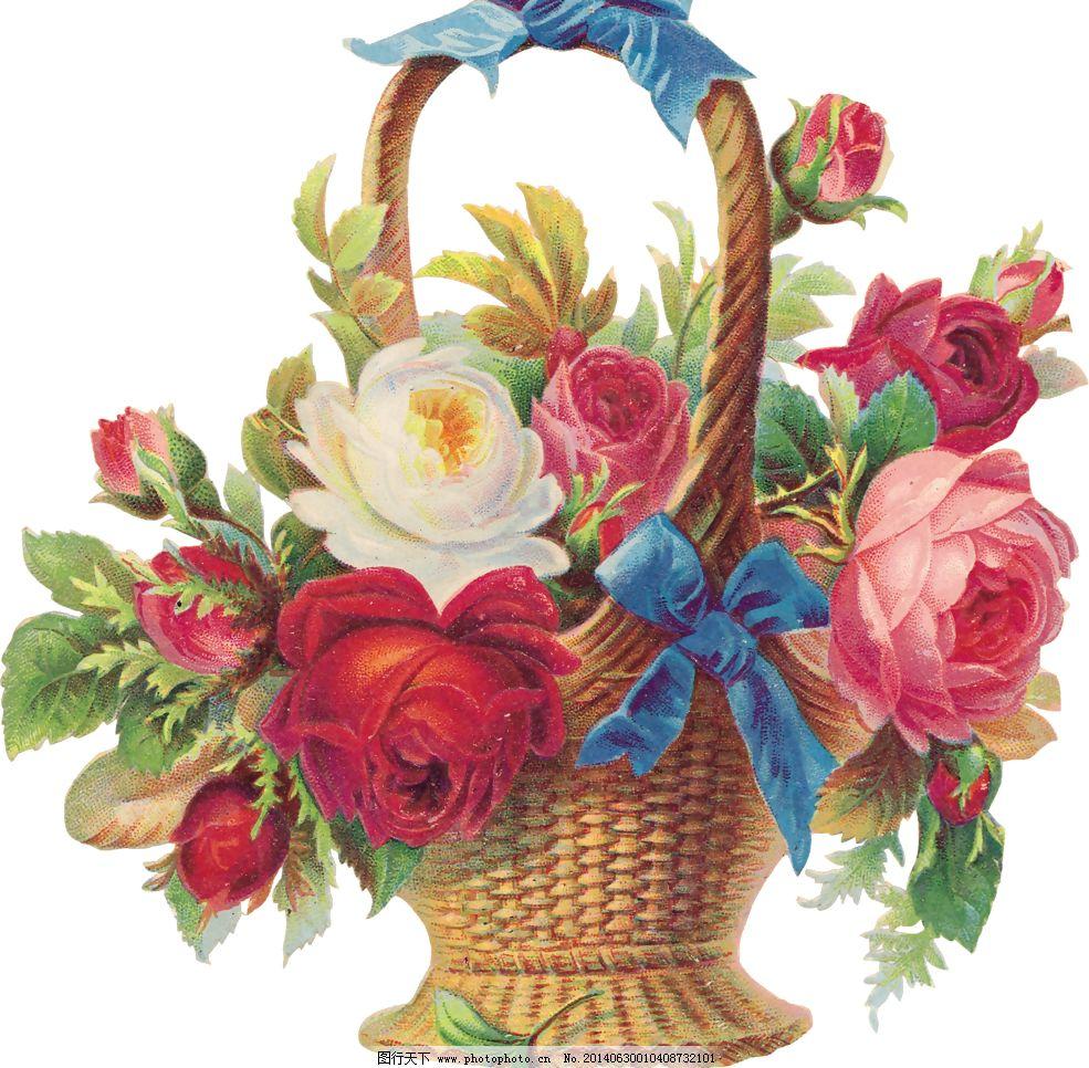 png 背景 壁纸设计 彩色玫瑰 红玫瑰 蝴蝶结 花草 花篮 花纹 花纹背景