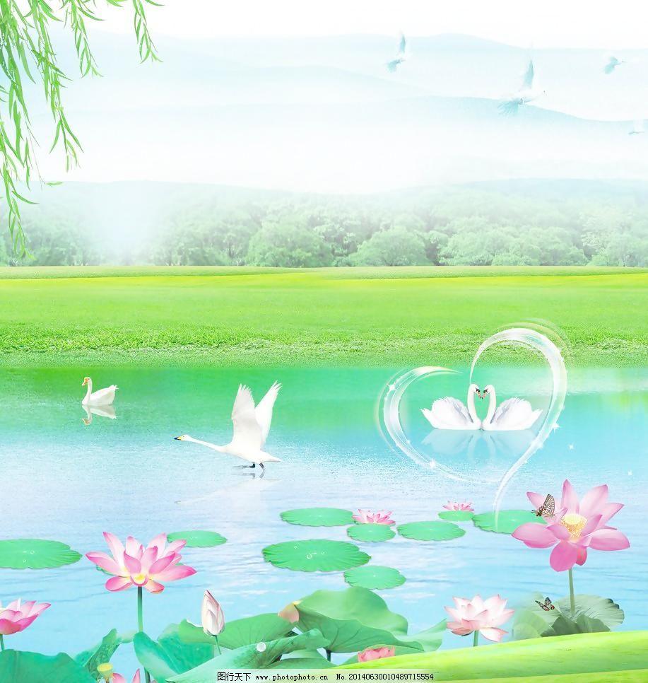 池塘 底纹边框 鹅 荷花 荷叶 花 柳树 设计 天鹅湖 天鹅 荷花 花 荷叶图片