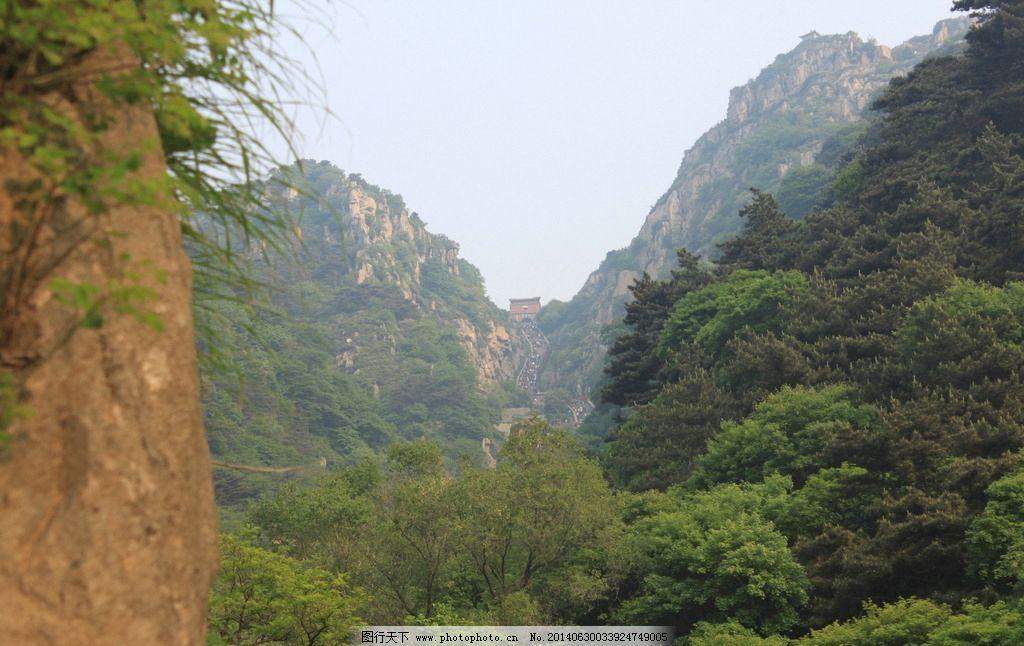 泰山 山峰 树木 树林 天空 国内旅游 旅游摄影 摄影 72dpi jpg